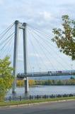 在秋天被围拢的缆绳被停留的桥梁塔 图库摄影