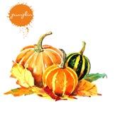 在秋天设计元素事集合上写字的水彩 向量例证