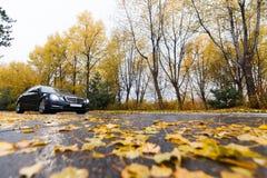 在秋天路的黑汽车 免版税库存照片