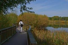 在秋天辉煌的步行 免版税库存图片