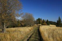 在秋天领域在Gorce山,波兰的道路 图库摄影