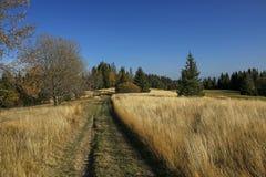 在秋天领域在Gorce山,波兰的道路 免版税库存图片