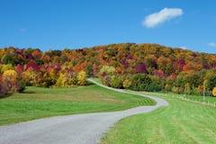 在秋天颜色的乡下公路 免版税库存图片