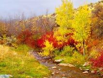 在秋天颜色的山小河 免版税库存图片