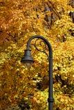 在秋天颜色的灯岗位 免版税库存照片