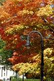 在秋天颜色的灯岗位 免版税库存图片