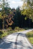在秋天颜色的石渣路 库存图片