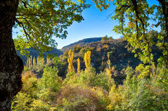在秋天颜色的Landcsape 免版税库存照片