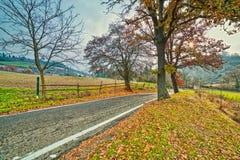 在秋天风景的乡下公路 库存图片