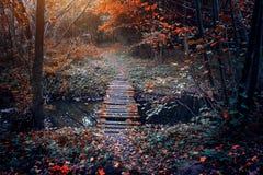 在秋天风景的老桥梁 免版税库存图片