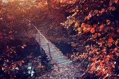 在秋天风景的老桥梁 库存照片