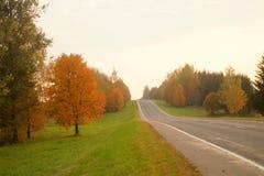 在秋天风景的路 免版税库存照片