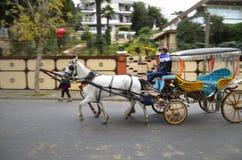 在秋天Buyukada敞蓬旅游车 马支架 免版税库存图片