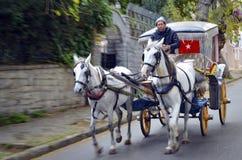 在秋天Buyukada敞蓬旅游车 马支架 库存图片