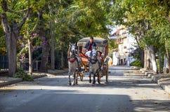 在秋天Buyukada敞蓬旅游车 马支架 免版税库存照片