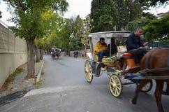 在秋天Buyukada敞蓬旅游车 马支架 库存照片