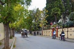 在秋天Buyukada敞蓬旅游车 马支架 免版税图库摄影