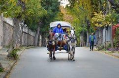 在秋天Buyukada敞蓬旅游车 马支架 图库摄影