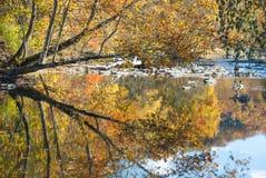 在秋天III的发烟性山小河 免版税图库摄影