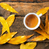 在秋天leeves的茶杯 图库摄影