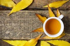 在秋天leeves的茶杯 免版税库存照片