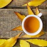 在秋天leeves的茶杯 免版税图库摄影