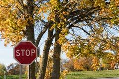 在秋季之前停止交通标志 免版税库存图片