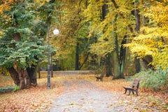 在秋季公园在10月,有长凳的小径的看法放松的 图库摄影