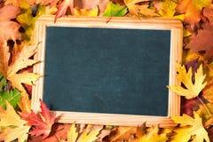 在秋季叶子的黑板 库存照片