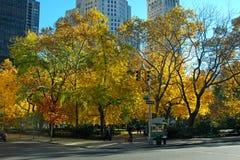 在秋季期间的麦迪逊广场公园 库存照片