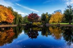 在秋季的五颜六色的树包围的波士顿共同的庭院里筑成池塘 免版税图库摄影