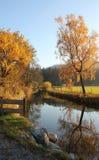 在秋季风景的平静的小河 图库摄影