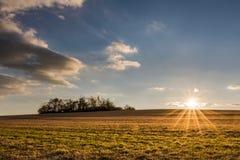 在秋季风景的美好的日落与牧场地 免版税库存照片