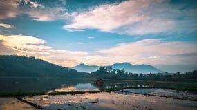 在种植园前的美丽的领域米早晨在村庄乡区与在Java的山 免版税库存图片