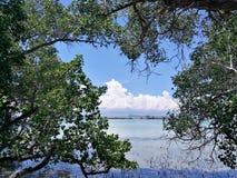 在种植园海湾的夏天海滩 免版税库存照片