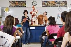 给在科学类的学生介绍 库存图片