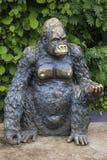 在科尔切斯特动物园的大猩猩雕象 免版税库存图片