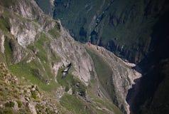 在科尔卡峡谷上的神鹰在神鹰十字架或Cruz台尔Condor观点, Chivay,秘鲁 免版税图库摄影