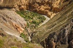 在科尔卡峡谷buttom,秘鲁 免版税库存照片