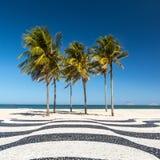 在科帕卡巴纳海滩的棕榈树 库存照片