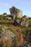在科拉半岛,俄罗斯的小山的花岗岩冰砾 库存图片