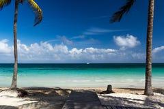 在科科岛海岛上的空的海滩有棕榈树的。 免版税库存图片