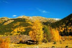 在科罗拉多山的秋天 库存图片