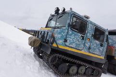 在科罗拉多山的雪猫 免版税图库摄影
