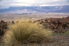 在科罗拉多河的马掌峡谷在美国 免版税图库摄影