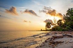 在科苏梅尔海滩的金黄日出 免版税库存照片