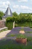 在科隆比耶尔附近的庭院和大别墅La Chatonniere 免版税库存照片