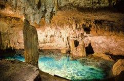 在科巴的Cenote 库存照片