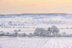 在积雪的领域的冬天薄雾 库存图片