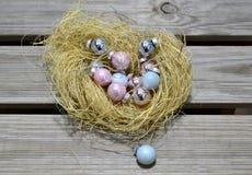 在秸杆巢的圣诞节装饰品 免版税库存照片
